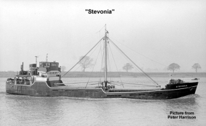 STEVONIA1948
