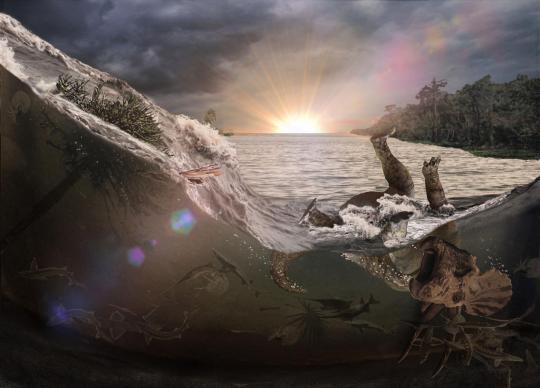 Dinosaur death due to meteor strike